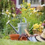 Gardening: How to Avoid Pain and Injuries